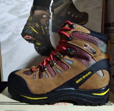 کفش آسیا